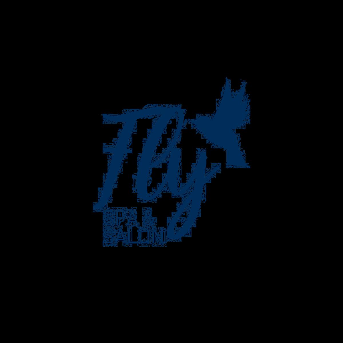Fly blue logo