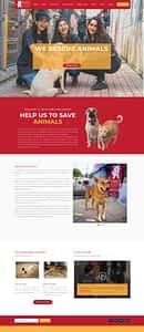 TWS Website